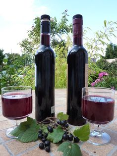 CREAM OF CASSIS (blackcurrant berries, blackcurrant leaves, red wine, sugar, alcohol . Cocktail Drinks, Alcoholic Drinks, Beverages, Irish Cream, Tequila, Infused Oils, In Vino Veritas, Elderberry Syrup, Cooking