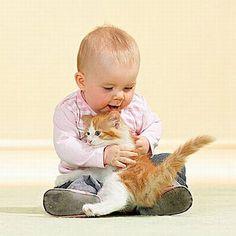 bébé et chat trop mignons 2