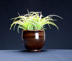 Brown Black Window Planter, Hand Thrown Porcelain Pottery, Herb Garden, Succulent Garden, Ceramic Pot,    Caldwell Pottery