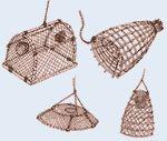 PESCAREonline.it - Il magazine della pesca sportiva in rete - Guida su dove pescare, come pescare, per il pescatore esperto e i pescatori dilettanti