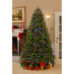 Costco product reviews and customer ratings for 9' Feel-Real Richmond Spruce Artificial Pre-lit Tree. Read and compare experiences customers have had with National Tree Company products.