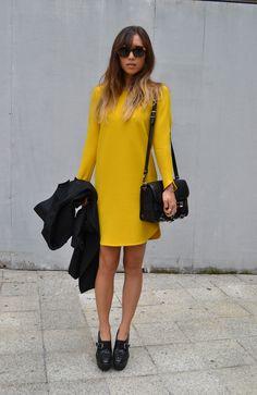 honey bee yellow + black