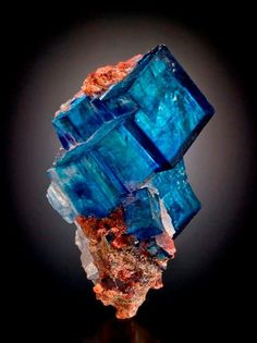 Blue halite cluster with minor sylvite. from Intrepid Potash East Mine, Carlsbad Potash District, Eddy Co., New Mexico, USA Copyright © Jeff Scovil  P.S. The color is caused by the radiation of Potasium-40 naturally present within the surrounding sylvite.  Amazing Geologist