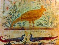 """This fresco of a Phoenix above two peacocks is from a tavern in Pompeii (don't call them thermopolia!). Paul Roberts says it was like a pub sign: eg. Meet you for a drink at the sign of the Phoenix! The inscription translates, """"The Phoenix is happy, and you!"""" (probably an apotropaic slogan)"""