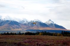 Discover Canada's highest peak, largest ice fields, and most diverse grizzly bear population in Kluane National Park and Reserve.