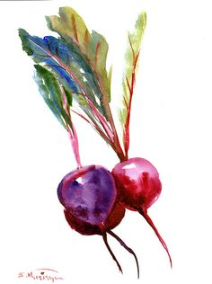 Beets Painting, original watercolor, 12 x 9 in, vegetables, kitchen restaurant…