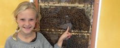 The Bee Cause project: Grants for bee hives in the school