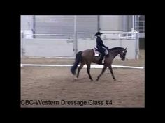 2013 Western Dressage Association of America World Championship Show Basic Level Test 2 Lynn Palm and Larks Home Run owned by Dr Elizabeth Stauber-Johnson, score 81% judged by Debbie Riehl-Rodriguez