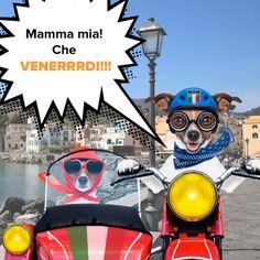 Mamma Mia! Che VENERRRDI! Voihan Perrrjantai, mitä Italian hintoja! Kesäkuun ensimmäisen Perrrjantain kunniaksi kaikki Italian matkat -150 € tämän päivän ajan. Tartu tarrrjouksiin salamannopeasti!  #matkatarjous #matkailu #Aurinkomatkat #matka Mamma Mia, Movies, Movie Posters, Art, Italia, Art Background, Films, Film Poster, Kunst