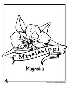 state flower coloring pages mississippi state flower coloring page classroom jr