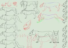Species concept + full perms+ anim  *CLOSED* by NorthernRed
