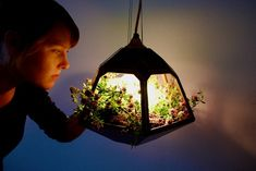 """Mexican-born, Netherlands-based designer José de la O unveiled a brilliant hanging pendant lamp that doubles as a vegetable garden at this year's Milan Furniture Fair. Dubbed """"Vicky"""", the lamp uses a special bulb that provides increased light in the blue spectrum, which helps the plants grow"""