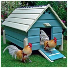 Painted chicken coop! MY DREAM!!