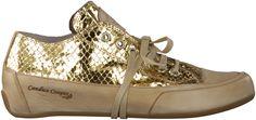 Gouden CANDICE COOPER sneakers ROCK ANGEL