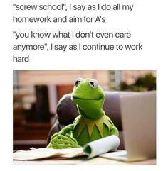 Kermit the frog,meme, school Really Funny Memes, Stupid Funny Memes, Funny Relatable Memes, Hilarious, Funny Stuff, Funny College Memes, Funny Things, Kermit, Memes Humor