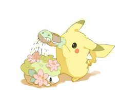 Pikachu watering Shaymin with a Squirtle pail. (Pokemon)
