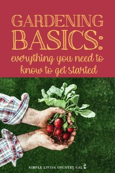 There is not better time to learn how to start a backyard garden and this might just be the best resource for you. Step by step tips to grow big this season List Of Vegetables, Planting Vegetables, Growing Vegetables, Vegetable Garden, Wonderful Salsa Recipe, Gardening For Beginners, Gardening Tips, Cucumber Beetles, Cedar Deck
