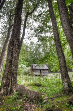 Old Jim Bales Place on the Roaring Fork Motor Trail in the Great Smoky Mountain National Park
