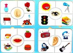five senses cards printables for kıds (4)