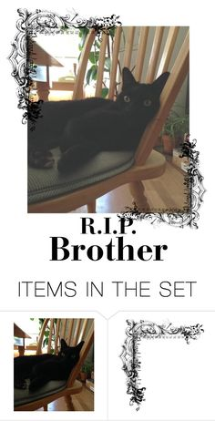 """""""R.I.P. Brother"""" by mugetsu ❤ liked on Polyvore featuring art"""