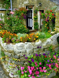 Yorkshire England. I love how its such a small space but is bursting with color and growth.