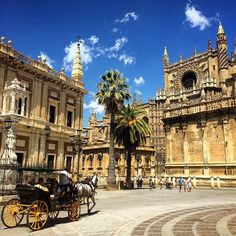 It's a beautiful day to plan a trip to #Sevilla. Don't you think?