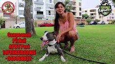 #CampeonatoApbtPeru  #ApbtPeru #LisMendiola