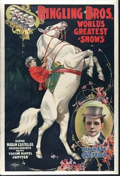 seamusliamobrien:    Ringling Bros World's Greatest Shows  Daring Madam Castello's amazing exploits on the equine marvel 'Jupiter.'  Madam Ada Castello