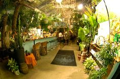 Tribhuus Zürich Altstetten Malaga, Brunch, Lokal, Heaven On Earth, Restaurant, Places To Go, Table Decorations, Plants, Home Decor