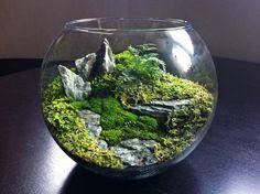 Hier is een heel landschap nagemaakt in een glazen container.