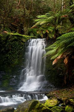 Horseshoe Falls, Mt. Field National Park, Tasmania, Australia. Photo: John Dekker