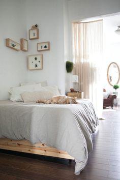 "Sneak Peek: Best of Cats. ""Magda is playing on the bed in her Brooklyn home."" #sneakpeek"