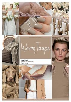 Pantone fashion color report fall 2016 fashion inspiration т Pantone 2016, Pantone Color, Fall Fashion 2016, Autumn Winter Fashion, Pinterest Trends, Color Trends, Color Combinations, Color Schemes, Estilo Fashion