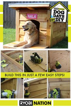 RYOBI Nation is a community of DIYers, RYOBI Fanatics, and people just like YOU, who share a passion for tools and seeing their ideas come to life. Dog Furniture, Diy Furniture Projects, Woodworking Projects Diy, Diy Wood Projects, Outdoor Projects, Diy Dog Bed, Dog Rooms, Animal Projects, Dog Houses