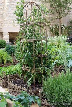 the garden: vegetable gardens: