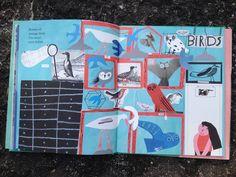 prateleira-de-baixo: Museologia Birds, Trees And Shrubs, Shelf Wall, Bass, Bird