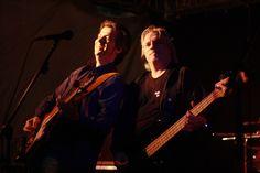 Rock Bands, Blues, Best Music, Concert
