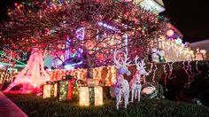 The Dyker Heights Christmas lights, a yearly tradition in south Brooklyn, is ready to bring holiday cheer to the masses
