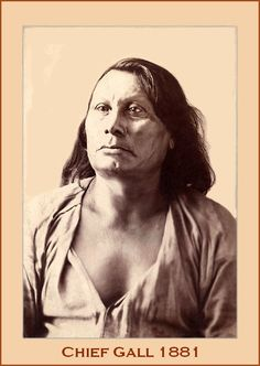 Chief Gall (c. 1840–1894) was a battle leader of the Hunkpapa Lakota in the long war against the United States. He was one of the commanders in the Battle of Little Bighorn.