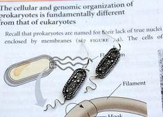 Bacterium Earrings by NBDesigns on Etsy, $50.00