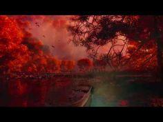 Κι ύστερα μου μιλάς - Λάκης Παππάς - YouTube Greek Music, Old Song, My Music, Northern Lights, Songs, Life, Country, Youtube, Music