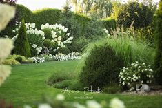 Garden Planning, Boxwood Garden, Beautiful Gardens, Garden Design, Plants, Garden View, Moon Garden, Backyard Landscaping, White Gardens