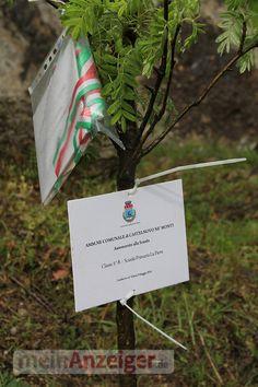 Italienische Schüler pflanzen Baum für NS-Opfer - Jena - meinanzeiger.de