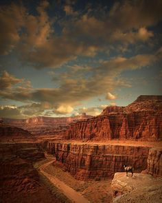 White Rim, Canyonlands National Park, Utah