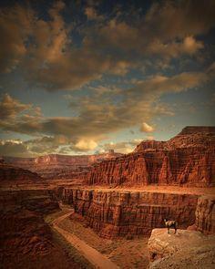 White Rim, Canyonlands National Park, Utah
