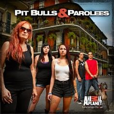 Some of the crew (Tia and her kids) from Villalobos Rescue Center (Pitbulls and Parolees) - they are amazing and inspire me to follow my dreams. HUGE fan family right here ♥ They are the reason we are going to New Orleans for a week to volunteer at the shelter! Lilah's choice for a vacation!