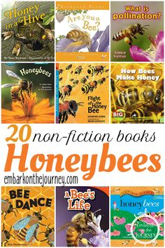 Studying bees this spring? Check out these nonfiction picture books about bees. Present factual information that will keep kids engaged. | embarkonthejourney.com via @letsembark