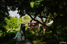 Wedding At Pine Lodge Farm In Mill Bay Bc Jon Mark Photography