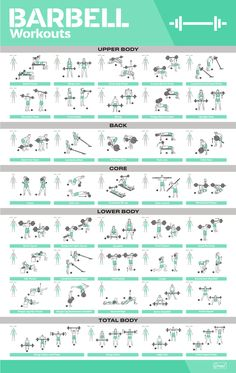 Workout Poster / Fitness Poster / Exercise Posters For Home Gym Gym Workout Chart, Gym Workout Tips, Dumbbell Workout, Free Weight Workout, Workout Challenge, Barbell Workout For Women, Home Gym Exercises, Barbell Exercises, Battle Rope Workout