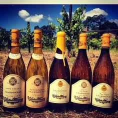 All of the Chardonnay we make!
